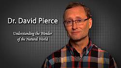 SU for Seniors David Pierce Presenter Video. Click to view.