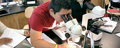 A biology student examining a specimen with a microscope